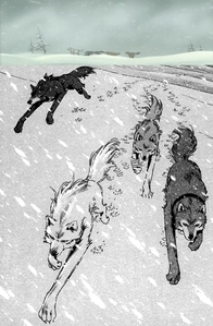 Wolf's Rain; The Pack in anime and manga
