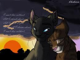 Leafpool~don't cha