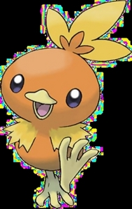 Vivio's starter Pokemon, Sari the Torchic!