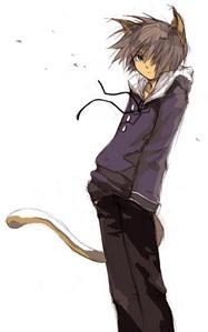 the boy with cat ears anime fanpop