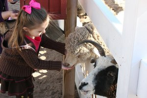 Haha, kids प्यार the zoo!