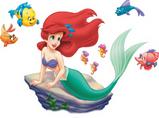 The Red-Head/Mermaid