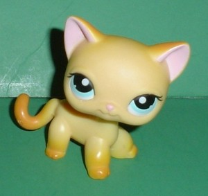 This is pet #339 also known as Brooke Hayes From LPS popolare