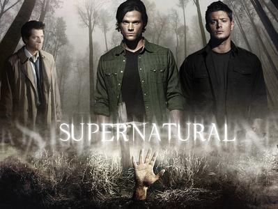 [b]Day 19 - Best tv show cast[/b]  Supernatural