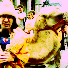 Mine: XD