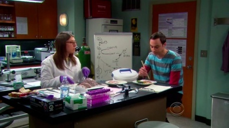 """[b]Day 21: [u]Scene that made you laugh.[/b][/u]   The """"Zack Who?"""" scene with Sheldon and Amy in The"""