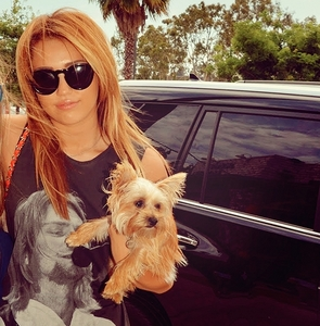 Miley holding her dog :)