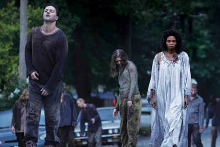 27. How does the Walking Dead compare to other movies/shows about zombies? I don't watch other mov