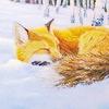 AC. 3 [url=http://caroldeckerwildlifeartstudio.net/products-page/wolf-fox-coyote-lynx/%E2%80%9Cshhhh%