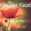 #6 - Flowers