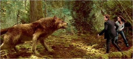 Hot<br /> <br /> jake as wolf, edward + bella???