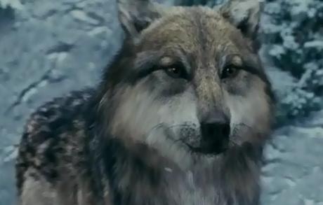 HOT<br /> Seth as Wolf?