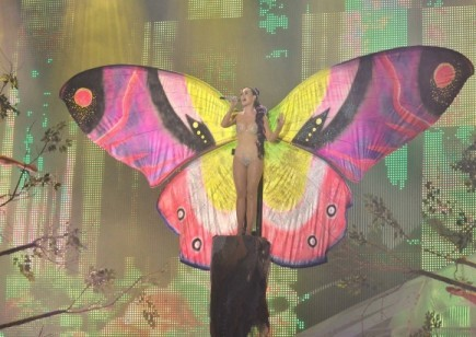 Katy Perry: The Butterfly.... X)