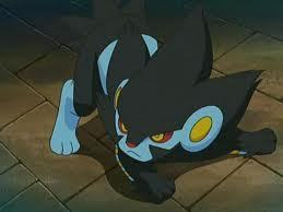 Day 1 (Favourite Pokemon): It changes all the time, but currently I really like Luxray.