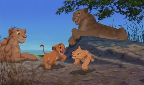 Here you go. Sorry that Simba and Nala are in the shot as well