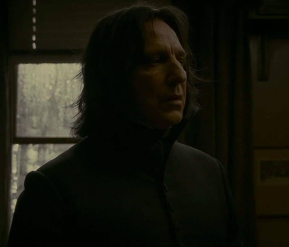The long journey into the light  (Poetry) - Severus Snape