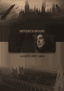 I cannot remember what book I read this in, it wasn't one of the HP books, but it - touched, moved -