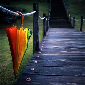 """<b>Round 43:</b><a href=""""http://www.fanpop.com/spots/colors/picks/show/1078370/colours-picture-cont"""