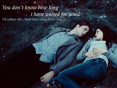 1) Twilight Saga