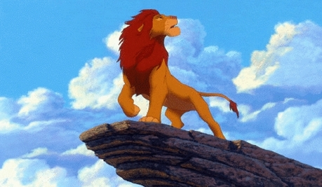 Round 5 is Adult Simba! 