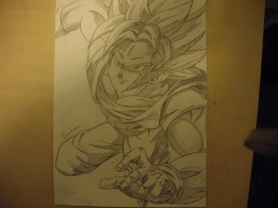 I drew this a while ago, but it's the only picture of Goku I have. I'll post Sasuke later.