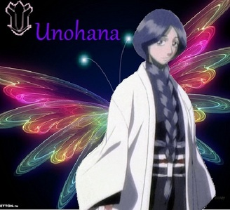 I like unohana's hair. i like it so much im growing my hair to do just like her.(my hair is black are