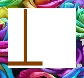 <b><u>YES! T is correct.</b></u> <b>Round 11:</b> Category: animales [2 words, 14 letters] <b>T ==