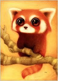 *gives him a red panda*