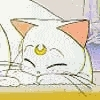 <b>Round 11:</b> <a href=&#34;http://www.fanpop.com/spots/sailor-moon/picks/show/1042631/sailor-moon-pict