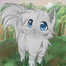 dovewing :3