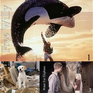 Round 14 A movie with an animal(s) 1st Nicolas97 2nd NellLovetCarter 3rd marthatsal