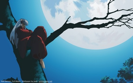 "<b>Round 1:</b> <a href=""http://www.fanpop.com/spots/inuyasha/picks/show/1052695/inuyasha-picture-con"