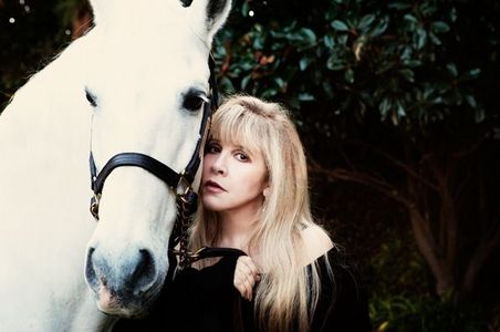 """Want to see Stevie Nicks tour """"In Your Dreams"""" in The UK??? Help us reach a goal of filling 6small"""