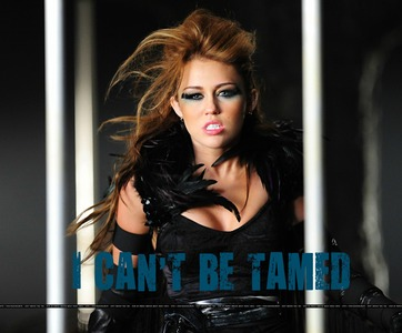 1st place-6 props 2nd place-5 props 3rd place-4 props ROUND 1 CAN'T BE TAMED -----------------------