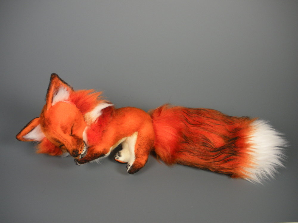 Fox Images Baby Fox Plush Hd Wallpaper And Background Photos 24592595