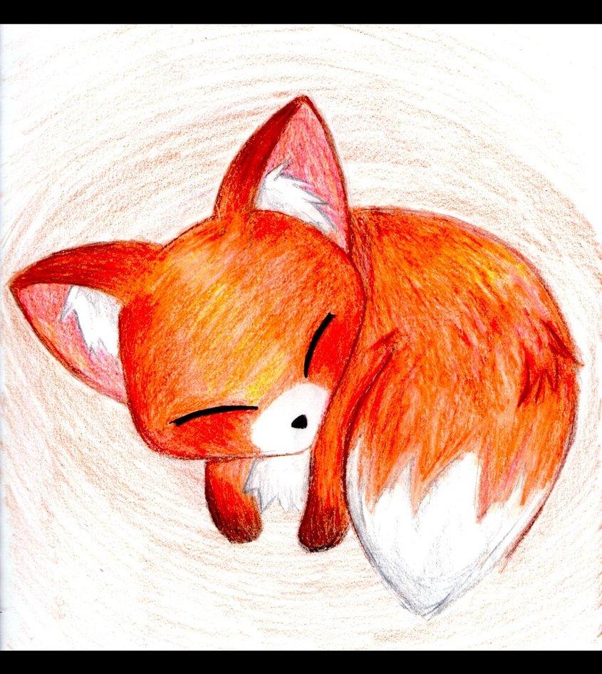 Baby cáo, fox