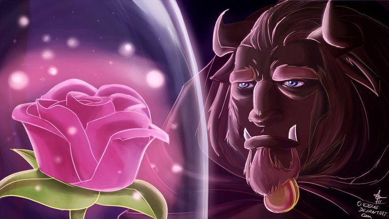 Beauty-and-the-beast-rose-pictures Images