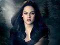 Bella Swan - twilight-series photo