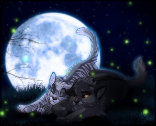 Warriors (Novel Series) پیپر وال called Graystripe & Silverstream