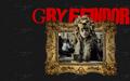 Gryffindor - luna-lovegood fan art