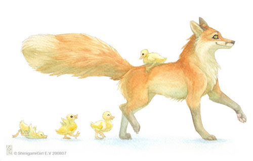 Mother zorro, fox