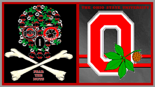 THE OSU FEAR THE NUTS