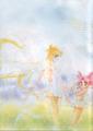 Usagi and Chibiusa - sailor-mini-moon-rini photo