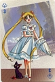 Usagi and Luna - luna-artemis-and-diana photo