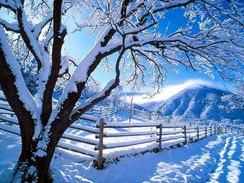 snowing wallpaper