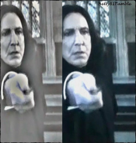 severus always by your side