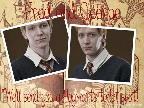 """We'll send 你 a Hogwarts toilet seat!"""