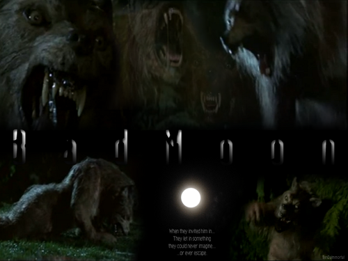 Bad Moon Werewolf - horror-movies Wallpaper