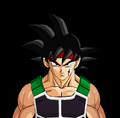 Bardack - bardock photo