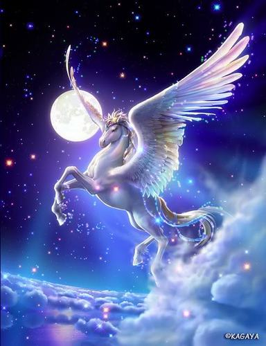Unicorns images Beautiful Pegasus wallpaper and background photos